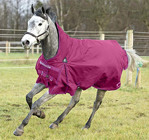 Horze Avalanche 1200D Medium Weight Turnout Blanket with High Neck 150g Boysenberry Purple 69