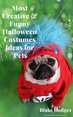 Most Creative & Funny Halloween Costumes Ideas for Pets: See more ideas about funny animals -