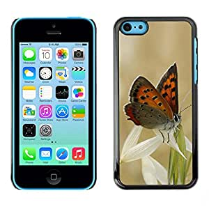 LECELL -- Funda protectora / Cubierta / Piel For Apple iPhone 5C -- Butterflies and grass --