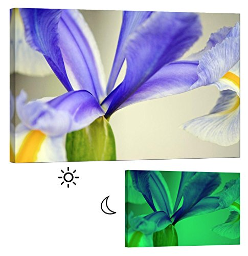 Glow in the Dark Canvas Painting - Stretched and Framed Giclee Wall Art Print - Flowers Colorful Iris - Master Bedroom Living Room Decor - 6 Hours Glow (Purple Framed Iris)