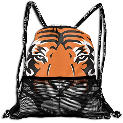 01535ada913 Princeton Tigers Helmets