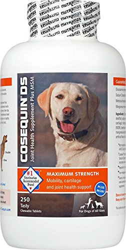 Cosequin DS Plus MSM Joint Health Supplement for Dogs - (540 Chewable Tablets) Cosequin-sfsf