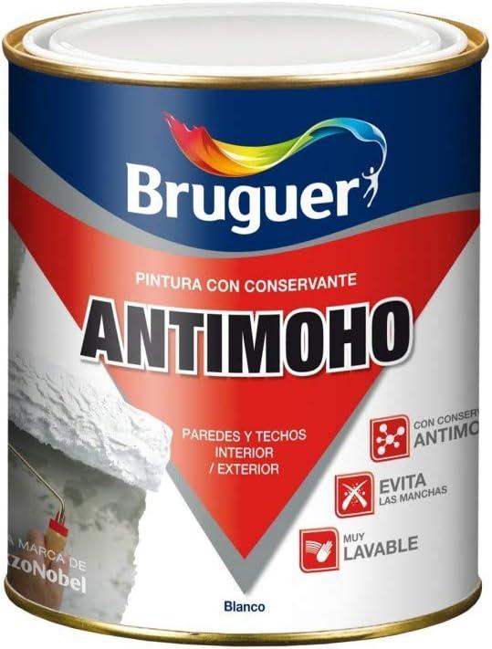 bote de pintura antimoho