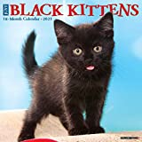 Just Black Kittens 2021 Wall Calendar