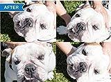 Squishface Wrinkle Paste - Cleans Wrinkles, Tear