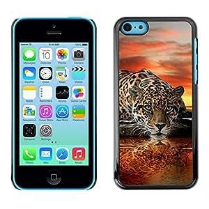 KOKO CASE / Apple Iphone 5C / leopard water mirror art sunset big cat / Slim Black Plastic Case Cover Shell Armor