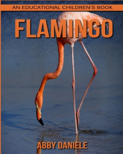 Flamingo! An Educational Children's Book about Flamingo with Fun Facts & Photos ebook