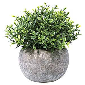 Hibery Mini Fake Green Grass Small Plastic Artificial Faux Potted Plants for House Home Decor 10
