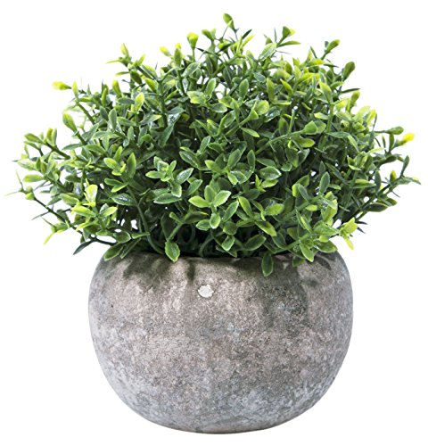 - Hibery Mini Fake Green Grass Small Plastic Artificial Faux Potted Plants for House Home Decor