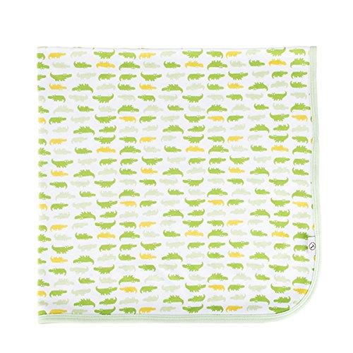 (Tadpoles Organics Lightweight Flannel Receiving Blanket, Soft Newborn Blanket, Baby Swaddle Blanket, Stroller Blanket (30