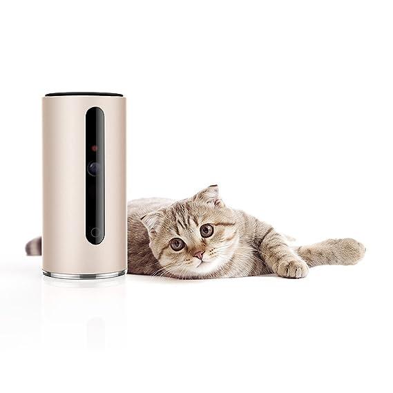 Petkit Mate Cámara de vigilancia para mascotas, giro de 340°, amplio ángulo de visión de 110°, audio de dos vías, vídeo de 720P: Amazon.es: Productos para ...