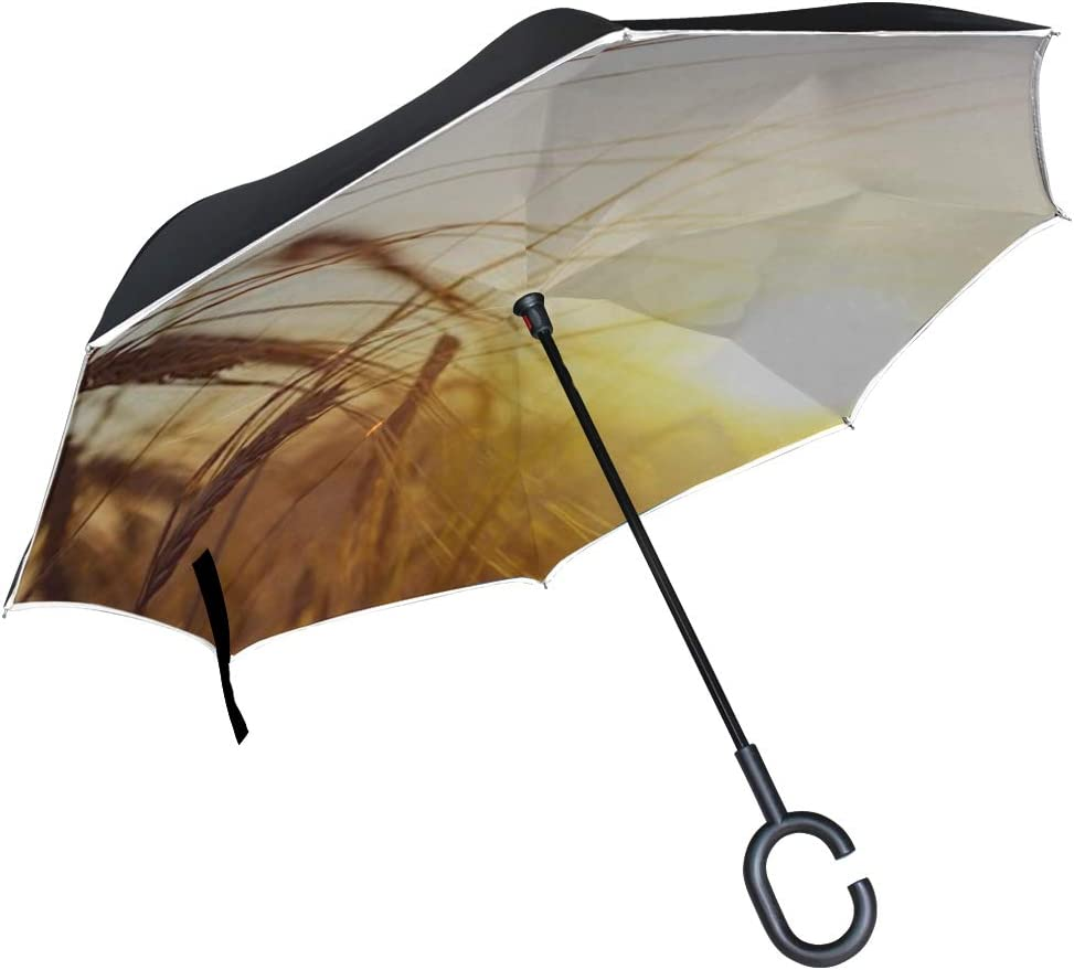 Double Layer Inverted Inverted Umbrella Is Light And Sturdy Beautiful Nature Sunset Landscape Ears Golden Reverse Umbrella And Windproof Umbrella Edg