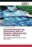 img - for Caracterizaci n de diatomeas del r o  ngulo, afluente del Lerma, M xico: Diversidad de diatomeas de un r o de agua dulce (Spanish Edition) book / textbook / text book