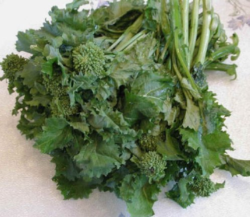 Fresh Heirloom Organic Broccoli RAAB Spring Rapini Rabe - 2000 Seeds - Asparago - Non GMO
