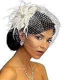 Leslie Li Women's Rhinestone Pearl Fascinator & Bridal Birdcage Veil One Size Ivory/Beige 21-F31