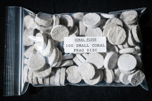 - Coral Plugs 100 CURED REEF SMALL FRAG DISC LIVE CORAL FRAG PROPAGATION