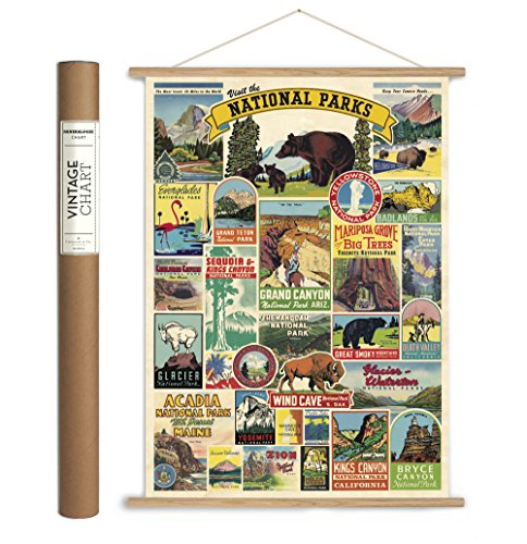 Cavallini Papers & Co., Inc. VPK/NP Caviling Vintage National Parks Hanging Poster Kit Vintage Wall Décor -