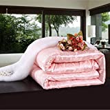 Shi Shang Pure Mulberry Silk Filled Comforter Silk Duvet Silk Quilt Doona(87x95inches) Bedspread Blanket Coverlet for Summer Season use(Queen, Pink)