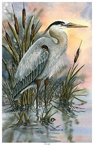 First Light Blue Heron Travel Art Print Poster by Dave Bartholet (12