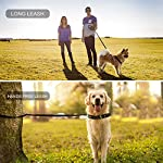 oneisall Hands Free Dog Leash,Multifunctional Dog Training Leads,8ft Nylon Double Leash for Puppy,Small & Large Dogs 14