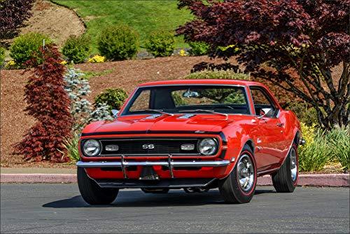 Yenko Camaro (Innerwallz Chevrolet 1969 COPO Camaro Yenko SC 427 Red Cars Wall Art, Pop Art, Poster, Art Prints | Rare Posters)