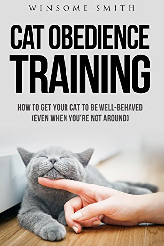 Cat Obedience Training: How To Get Your Cat To Be Well-Behaved (Even When You're Not Around)