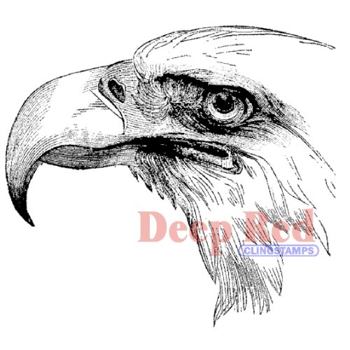 Deep Red Stamps Bald Eagle Portrait Rubber Stamp