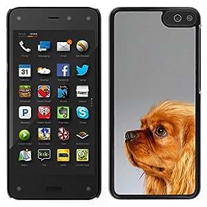 Caucho caso de Shell duro de la cubierta de accesorios de protección BY RAYDREAMMM - Amazon Fire Phone - Yorkshire Terrier de Oro Piel Marrón