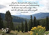 Trust In the Lord With All Your Heart - Mountain View Photo With Proverbs 3:5-6
