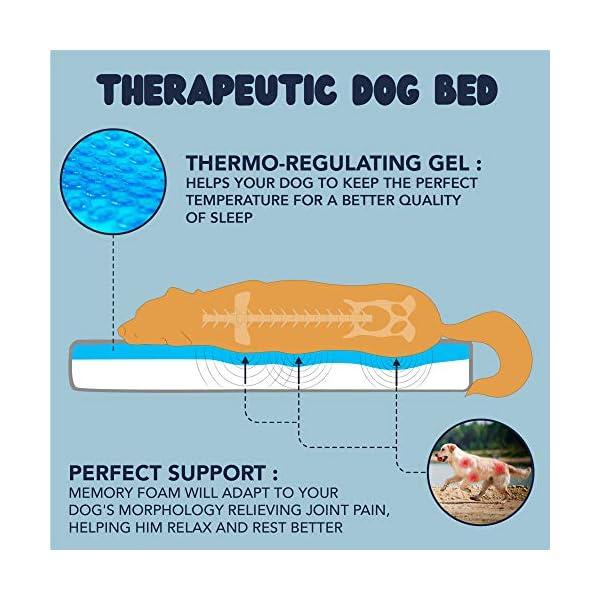 51efB1peVqL ZENAPOKI Dog Bed - M - Orthopädisches Kissen für Hunde, gut die Gelenke - Hundebett flauschig aus Memory Schaum, Dog Bed…
