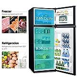 Galanz GLR12TS5F Refrigerator, Dual Door