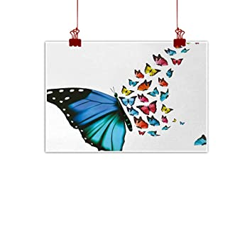 Amazon Com Sunset Glow Wall Painting Prints Butterfly Creative
