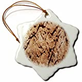 3dRose TDSwhite – Rock Photos - Geological Formation - 3 inch Snowflake Porcelain Ornament (orn_281887_1)