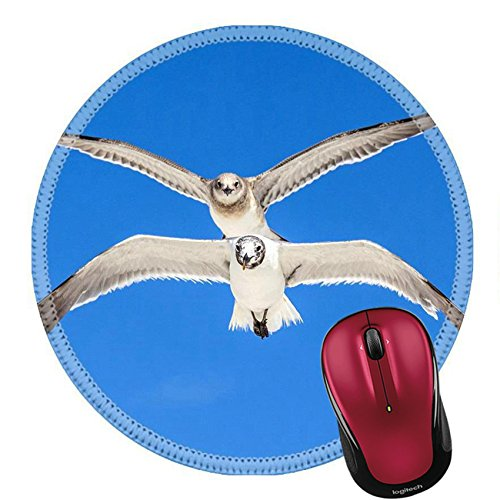 Liili Mouse Pad Natural Rubber Round Mousepad seagull on blue sky background at the ocean Image ID - Myer Brands At