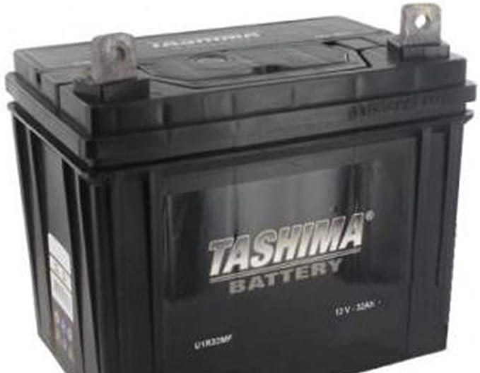 En Lucas Premium Gardenning Lp895 Batterie Motoculture 12 V 32Ah 300 Amps