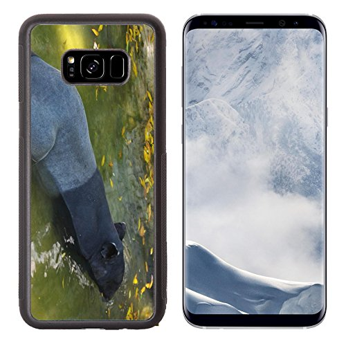 Liili Premium Samsung Galaxy S8 Plus Aluminum Backplate Bumper Snap Case tapir wild adult male in river corcovado national park costa rica IMAGE ID - Meadows Park Mal