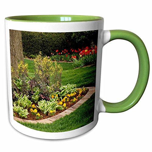 - 3dRose Danita Delimont - Kentucky - Yard, Audubon Park, Louisville, Kentucky, USA - US18 AJE0517 - Adam Jones - 15oz Two-Tone Green Mug (mug_144422_12)