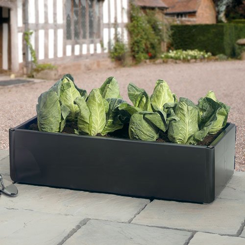 Mini Raised Bed - Special Offer Pack of 2 Garland