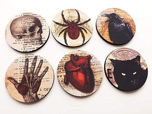 Halloween Home Decor Coasters 3.5 inch round neoprene skull anatomical heart black cat raven goth]()