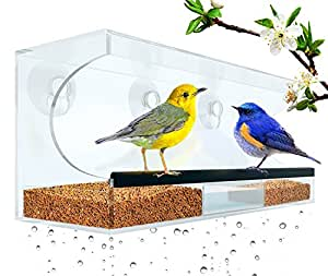 Flock To Me Clear Bird Feeder With Lifetime Replacement Guarantee. Self-Draining and Easy to Clean with Removable Tray. Entertaining Bird Watching From Inside Your Home