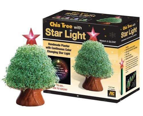 CHIA Tree with Starlight 1 ea (Bg Outdoor One Light)