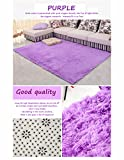 Kitchen Rugs Dash and Albert HANYUN Super Soft Modern Living Room Bedroom Anti-skid Shag Area Rug Carpet 4-Feet By 5-Feet / 120cm 160cm (Purple)