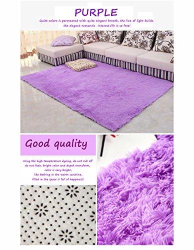 HANYUN Super Soft Modern Living Room Bedroom Anti-skid Shag Area Rug Carpet 4-Feet By 5-Feet / 120cm 160cm (Purple)