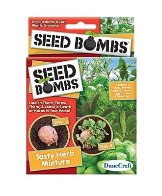 Dune Craft Seed Bombs 6/pkg-tasty Herb Mix