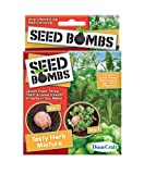 Dune Craft Seed Bombs 6/pkg-tasty Herb Mix