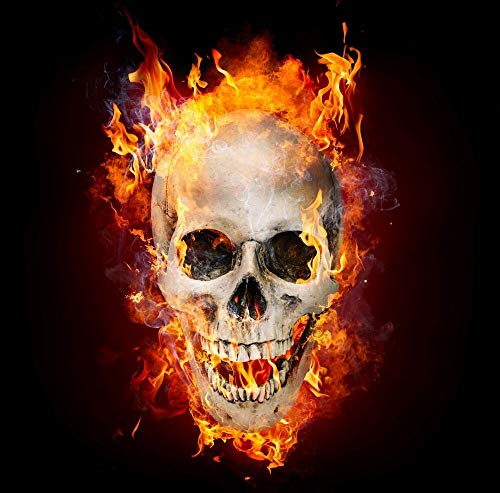 (Flaming Skull Wall - Sticker Graphic - Auto, Wall, Laptop, Cell, Truck Sticker for Windows, Cars, Trucks)