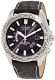 Citizen Men's CB0000-06E World Perpetual A-T Limited Edition Stainless Steel Watch with Black Genuine Leather Band