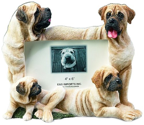 E&S Pets 35257-103 Large Dog Frames