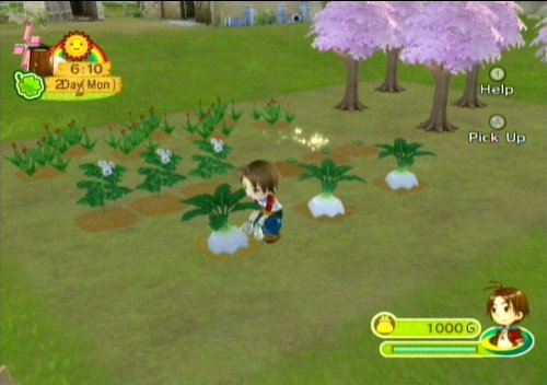 Image result for animal parade harvest moon