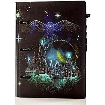 Amazon.com : Conquest Journals Limited Edition Harry Potter ...